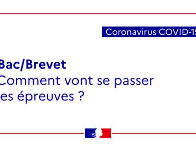 Examens : Quelles sont les règles applicables aux candidats des établissements d'enseignement français à l'étranger ?