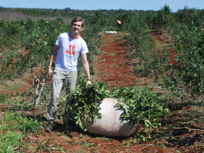 En Argentine,  un entreprenariat écologique et responsable à travers l'utilisation de la yerba maté